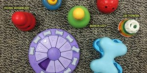 sample indoor dog activities: interactive food dispensing toys and puzzles