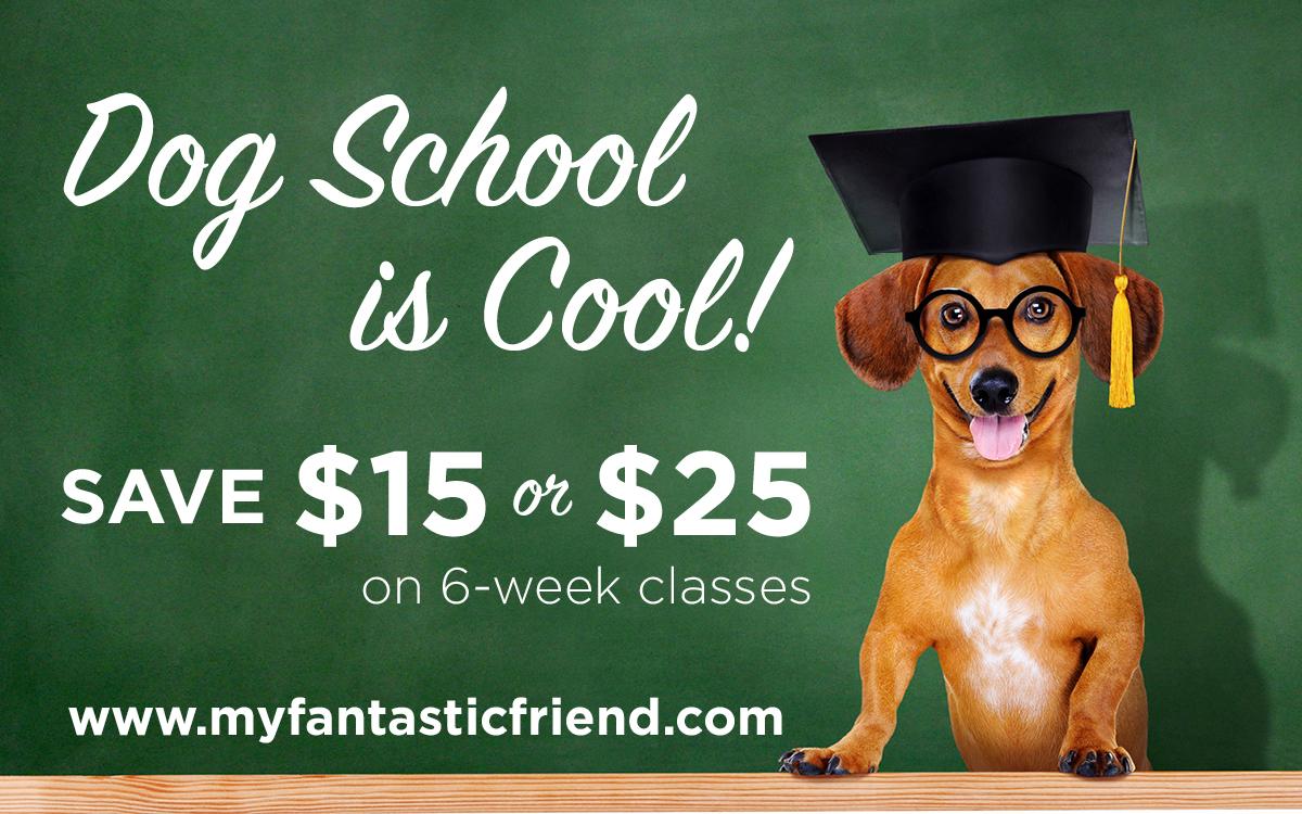 back to school savings on dog training classes